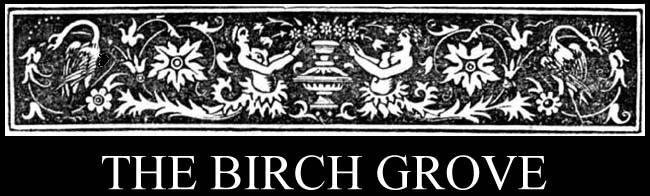 The Birch Grove