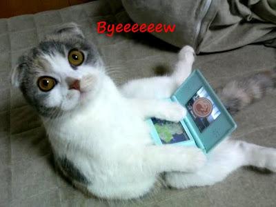 http://spiderpig.es/%c2%a1el-gato-me-ha-quitado-la-nintendo-ds