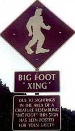 Big Foot Crossing Precautionary Sign