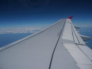 TACA A321 Wing
