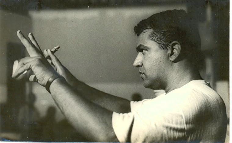 Retrato do artista quando (mais ou menos ) jovem