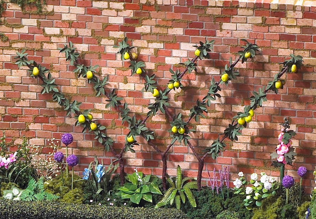 Cathy\'s Green Thumb: Garden Inspiration
