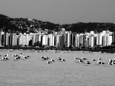 Florianópolis, março de 2008
