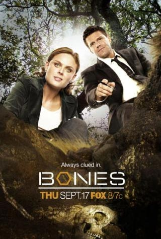 365 days300 movies bones season 5 20092010