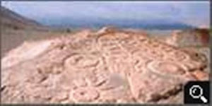 Petroglifo Toro Muerto Majes Corire