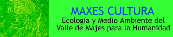 Maxes Cultura