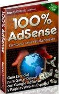 Guia Esencial para Ganar Dinero con Google Adsense