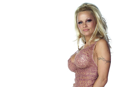 Pamela Anderson Hot Wallpaper