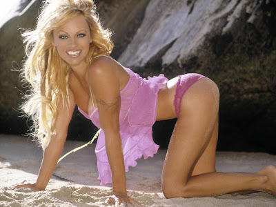 Pamela Anderson Hot picture gallery