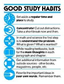 essay 7 habits