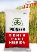 BENIH PADI HIBRID PIONEER