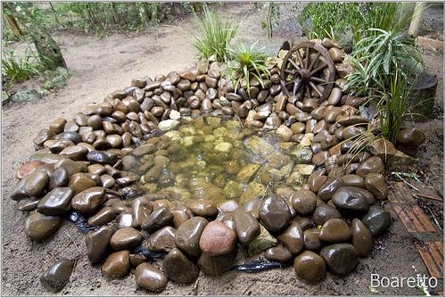 mini jardins pedra viva : mini jardins pedra viva:Orquidário OrquivivA: Paisagismo – Lagos e Fontes