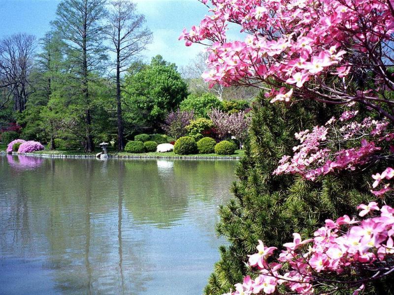 http://2.bp.blogspot.com/_x9CJkRj9J-I/S8MSFis6q-I/AAAAAAAAEAI/G33pXVkcf5Y/s1600/printemps_0012.jpg