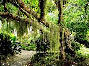 Taman Syurgaku