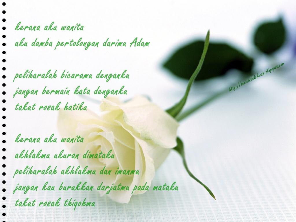 http://2.bp.blogspot.com/_xCSE9brcUvw/TNZwheco8mI/AAAAAAAAA8Y/JLibzsb05sQ/s1600/white-rose-wallpapers_5642_1024x768.jpg