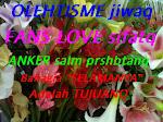 """""""ANKER""""nya OLEHTISME FANS LOVE"""