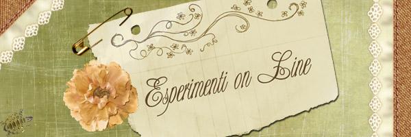 Esperimenti on-line