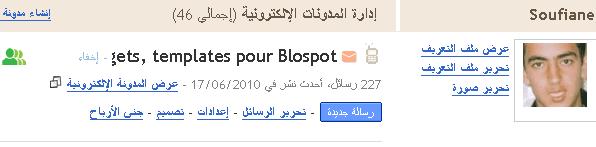 Langue Blog