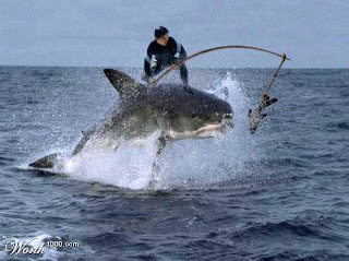 Daven 39 s blog having an extreme surf fishing in tough for Surf fishing for sharks