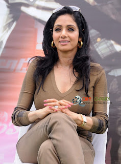 Old actress Sri Devi latest Photos29
