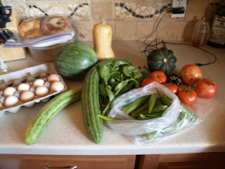 CSA, agriculture, organic, community supported agricutlure, produce
