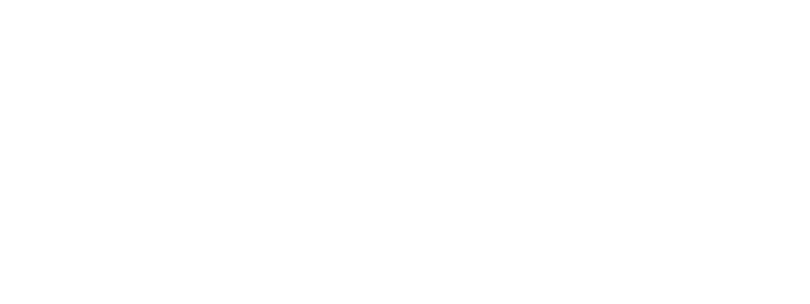 Рейвтревелерз