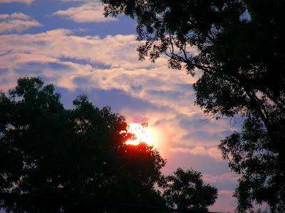 resplendent sunrise