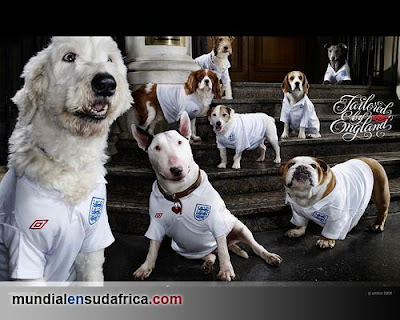 England Home Kit 2010 Umbro, Tailored by England - Camiseta Inglaterra Titular Mundial Sudafrica 2010