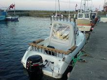 Trollingbåten