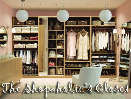 The Shopaholic's Closet