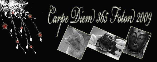 Carpe Diem 365  Foton 2009