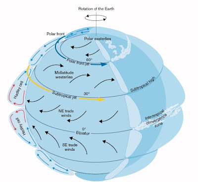 Where can I find a map of global wind patterns ?