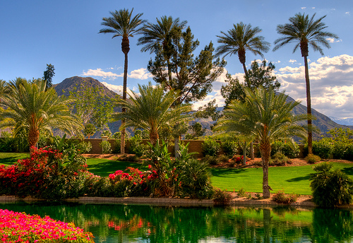 Palm Springs by Talke Photography