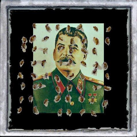 Les décorations du camarade Staline
