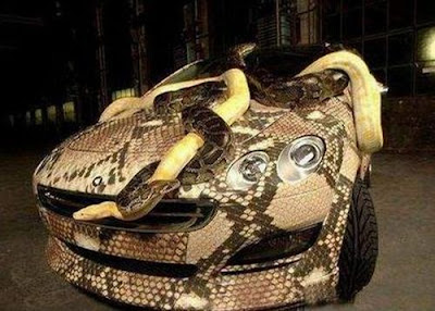 Snake Car - Covered in Vinal Wrap and