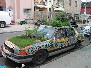 Community garden car on Kensington