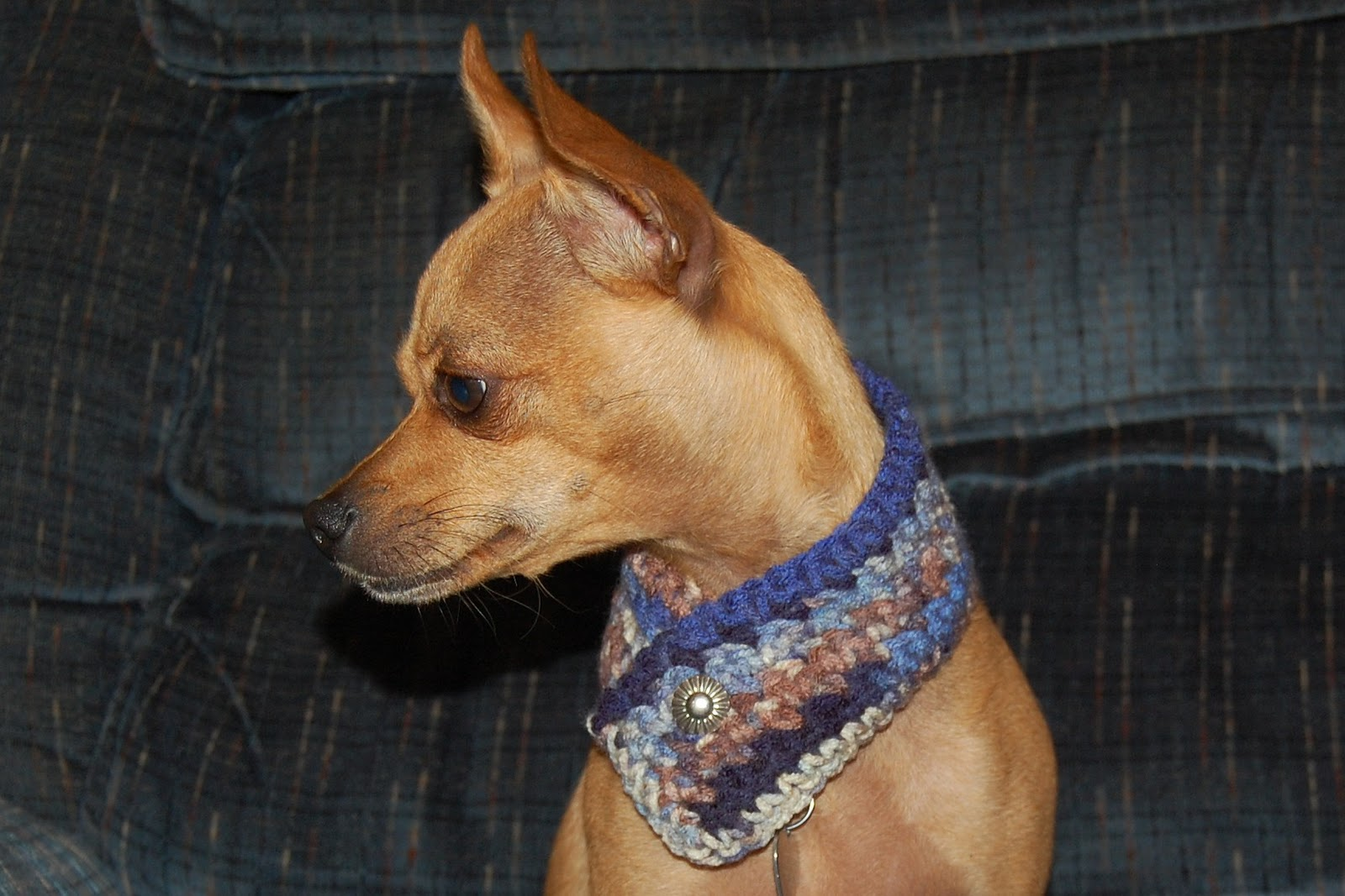 Free Crochet Pattern For Dog Bandana : Posh Pooch Designs Dog Clothes: 12 Collars of Christmas ...