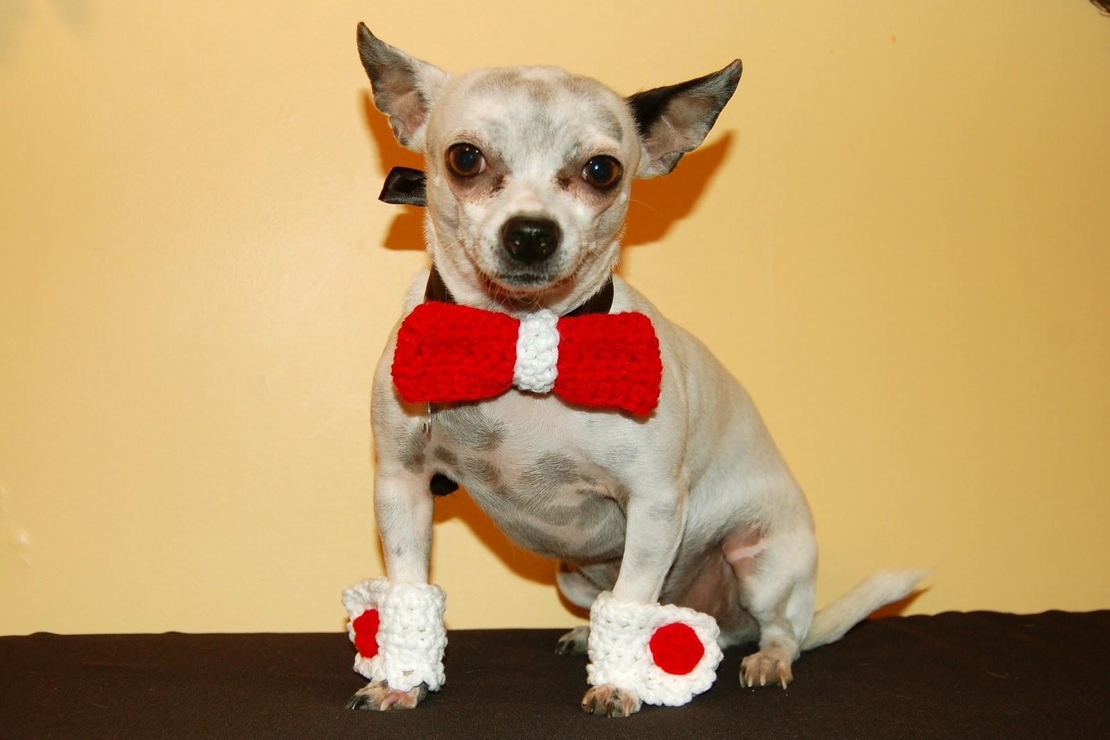 Dog Bowtie Collar Slide
