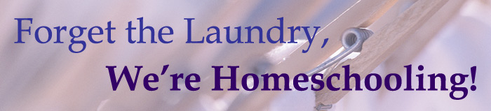 Forget The Laundry, We're Homeschooling!