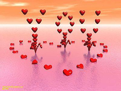 Berikut adalah seni cinta sejati untuk anda praktikkan :
