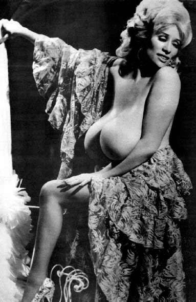 lussing endetarmen verdens smukkeste bryster