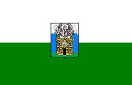 Vlag met wapen van Medellin