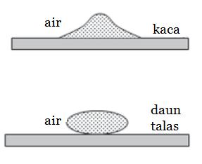 Kelas VII | Gaya Antar Partikel