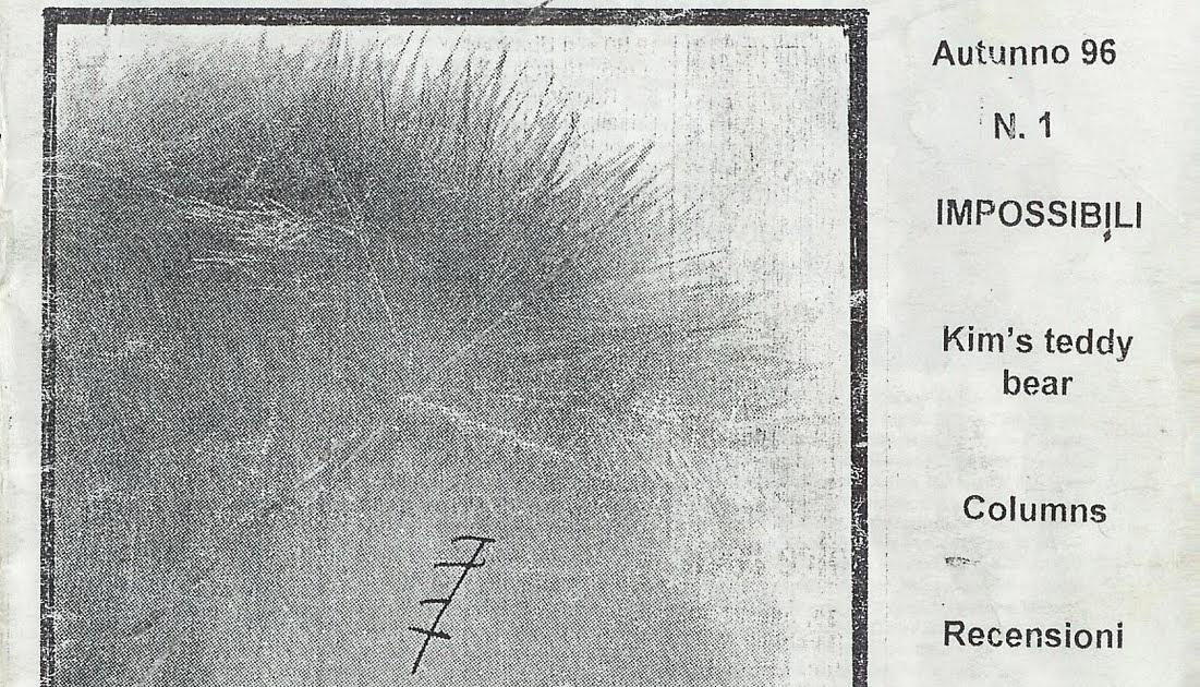 Irisches Tagebuch