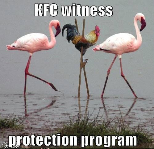 witness-protection-program.jpg