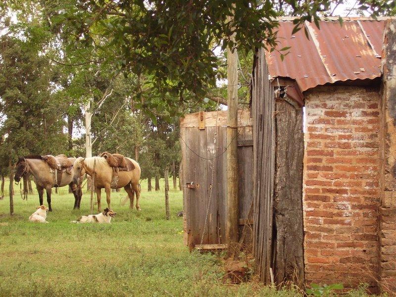Refugio Nativo