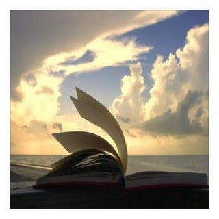 libro abierto al viento
