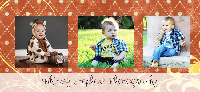 Whitney Stephens Photography
