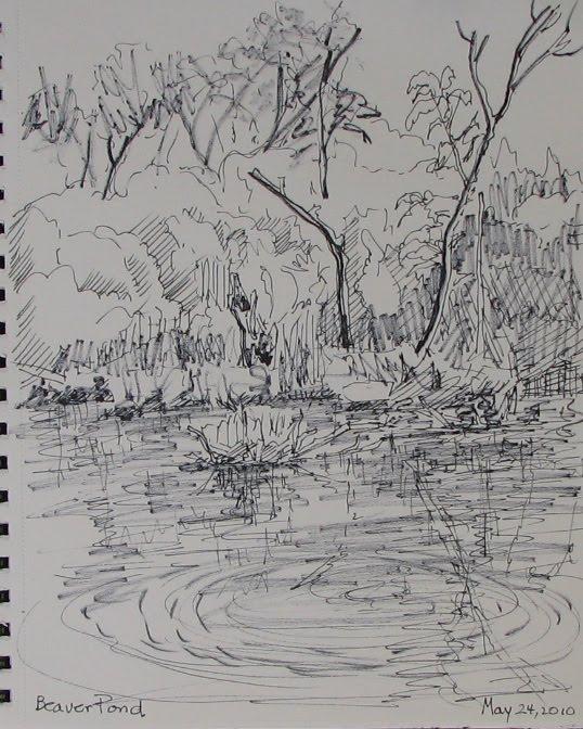 Frabjous Art Musings Beaver Pond Ink Sketch 12 X 9