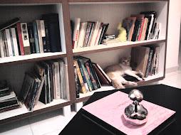 Baudelaire e o pato prateado